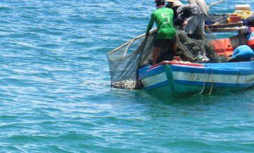 Nâng cao hiệu quả chương trình đưa lao động Việt nam đi làm thuyền viên tàu cá gần bờ của Hàn quốc